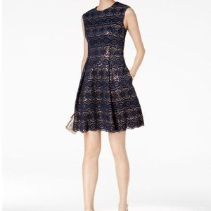 Vince Camuto Navy and Gold Scalloped Lace Dress